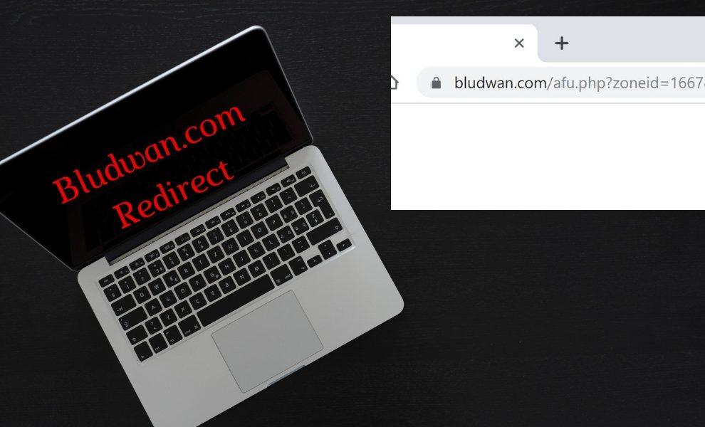 Remove Bludwan.com Homepage Redirect
