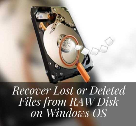 How to Recover Lost or Deleted Files from RAW Disk on Windows OS
